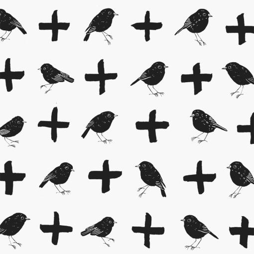 bird bird plus bird